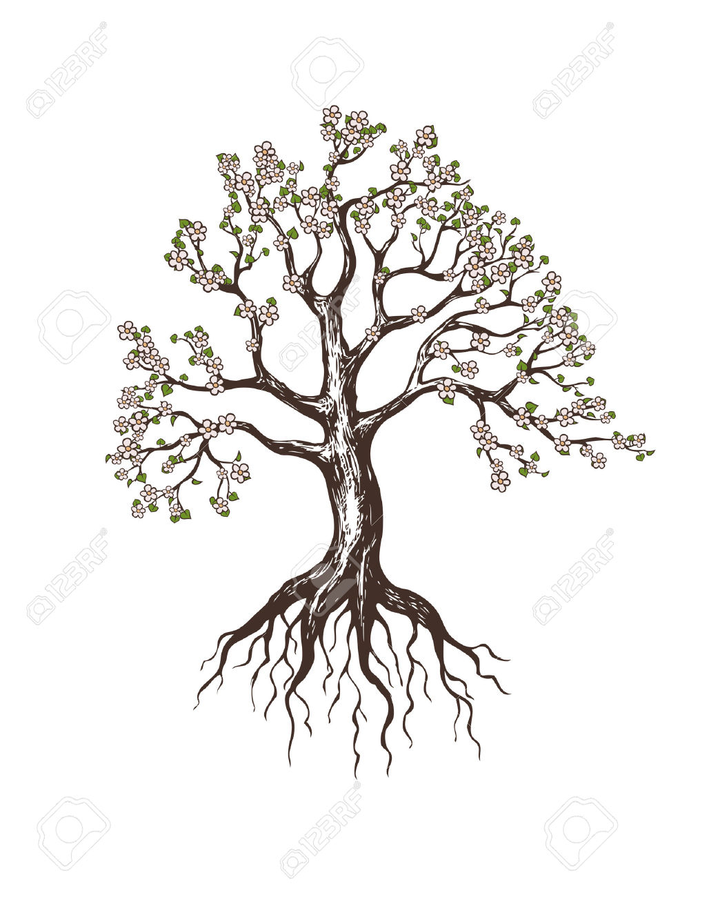 Oak Tree With Roots Tattoo: Tree And Roots Drawing At GetDrawings