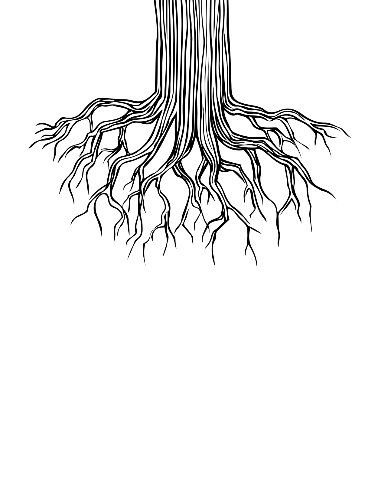 1250x1591 Tree Roots Drawing By Andrew Brennan
