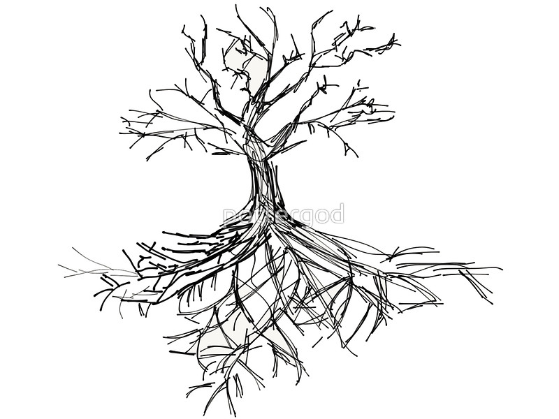 800x600 Tree Sketch With Roots Art Prints By Pottergod Redbubble