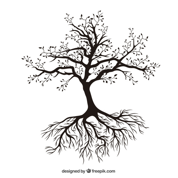 626x626 Tree With Roots Vector Free Download