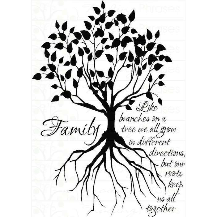 702x702 Drawn Roots Family