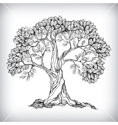 380x400 Hand Drawn Tree Symbol Vector