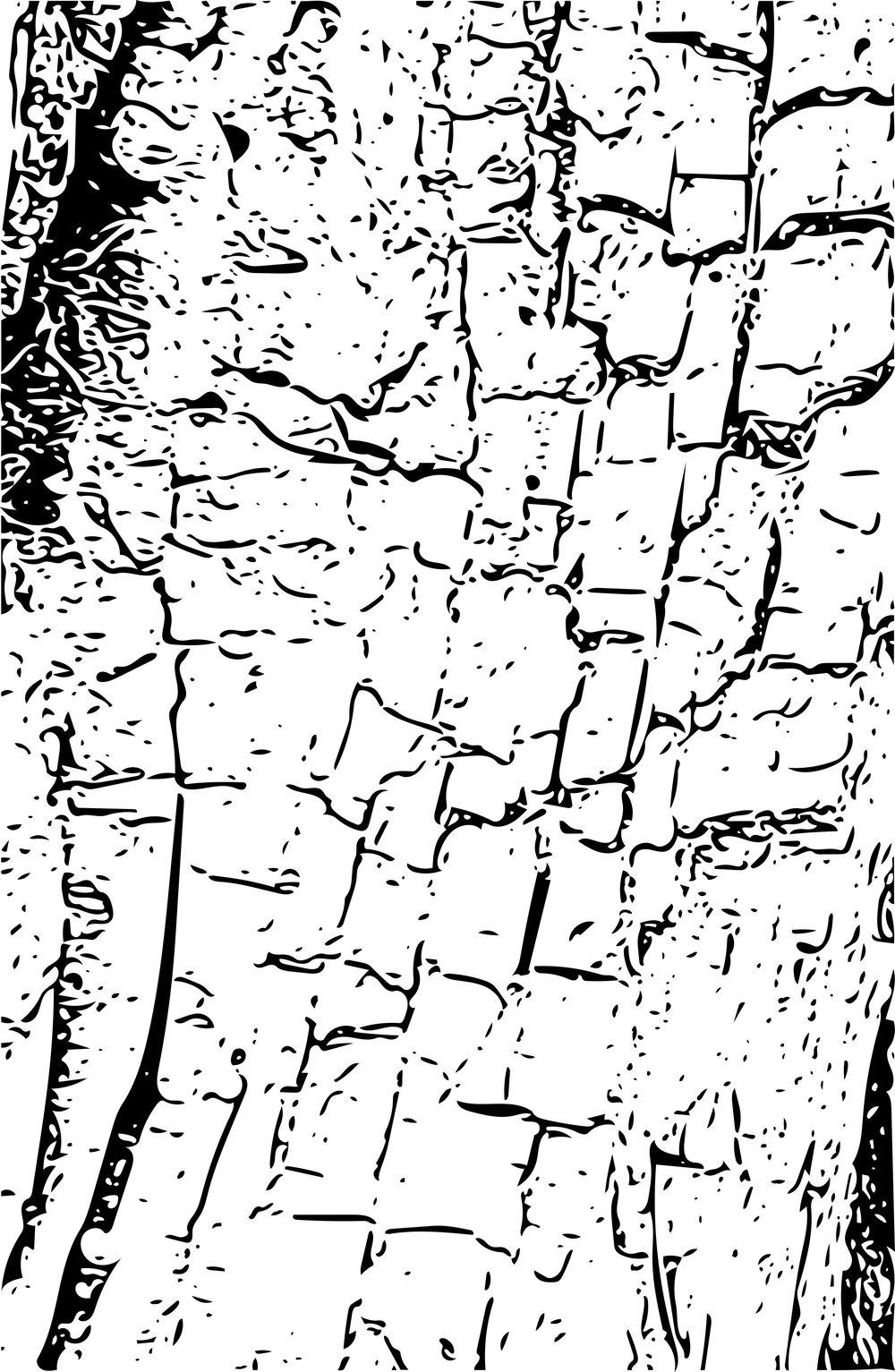 1000x1533 Mt. Rainier Tree Bark Jane Dunnewold
