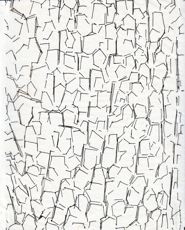 900x1119 Bark Diagrams Dripps phinney Studio