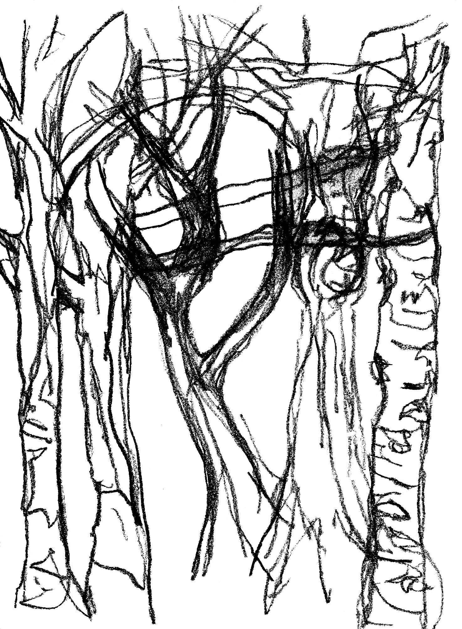 1474x2004 Bark Joanne Shewan Textiles