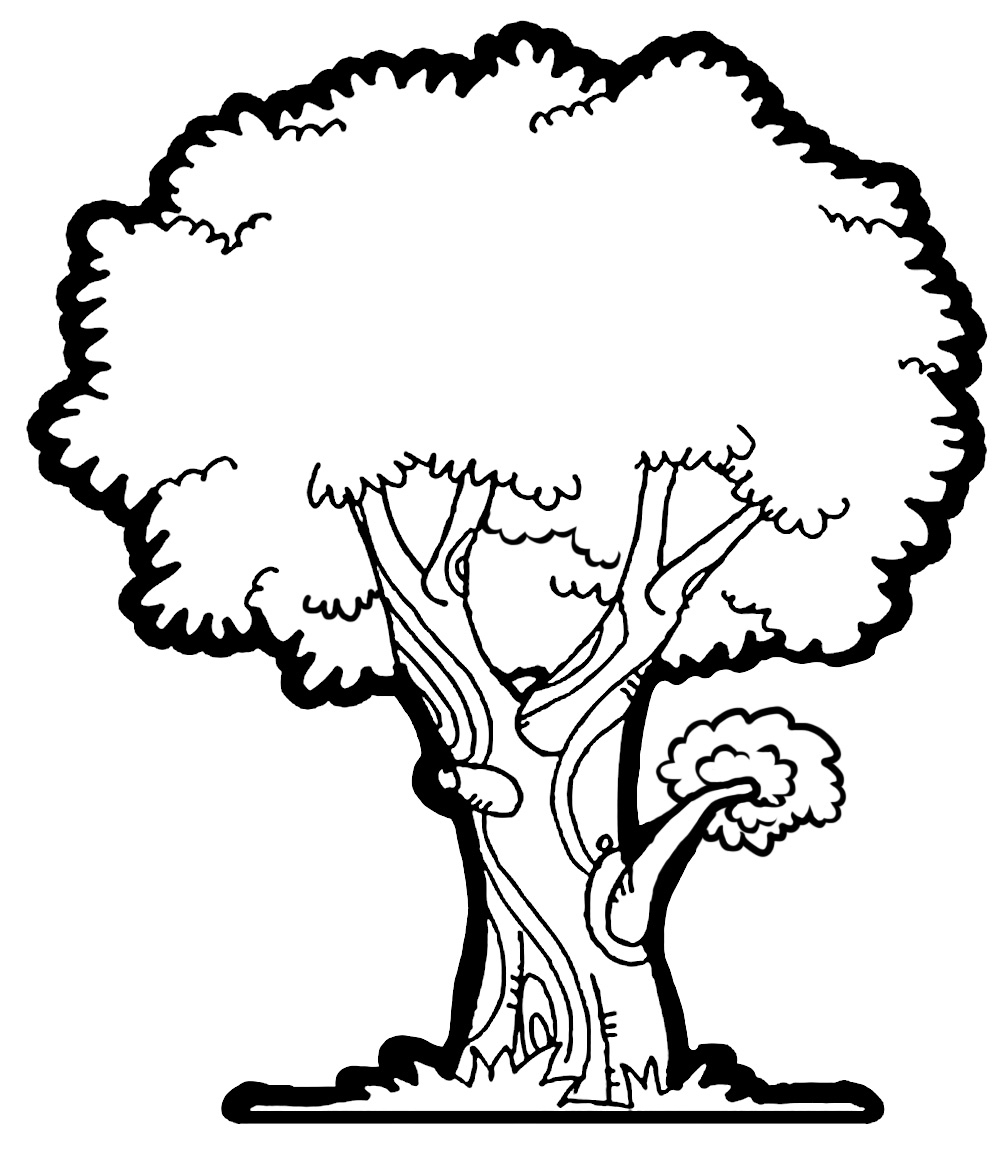 1000x1160 Mango Tree Clipart Black And White