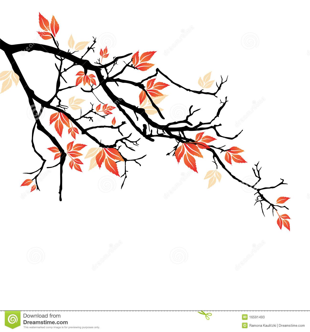 1300x1390 Drawn branch autumn tree