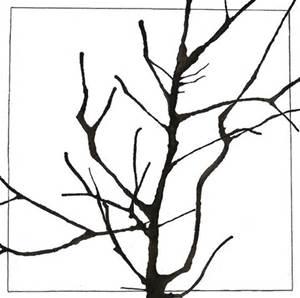 300x298 tree limb drawing