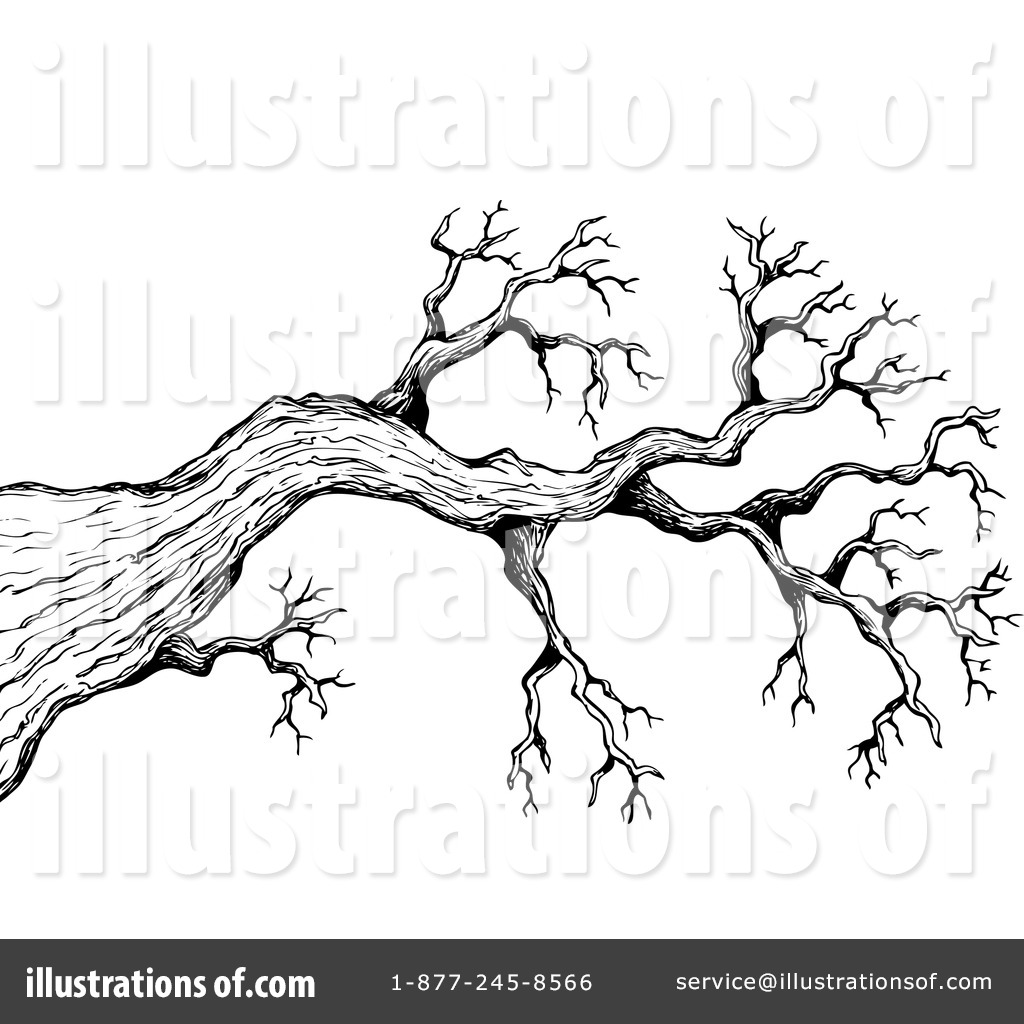 tree branches drawing at getdrawings com