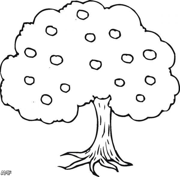 Tree Cartoon Drawing