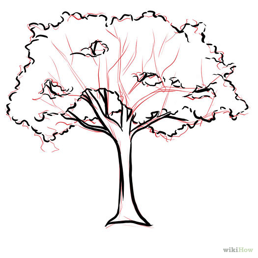 525x525 How to Draw a Cherry Tree 7 Steps