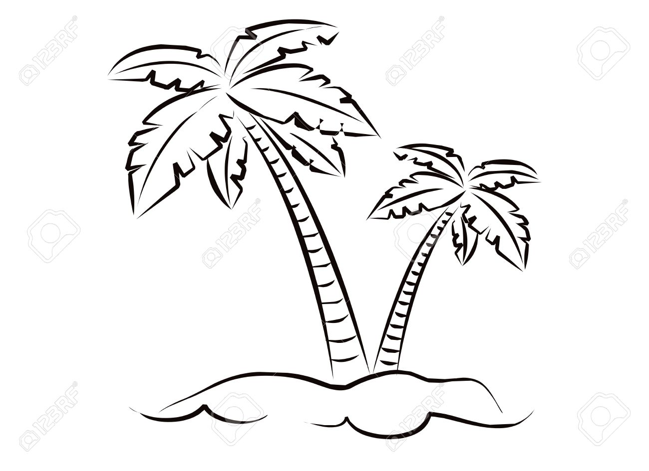 1300x945 Coconut Tree For Black And White Image On A White Background Stock