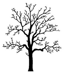 236x267 Deciduous Bare Tree With Empty Branches Black Silhouette Isolated