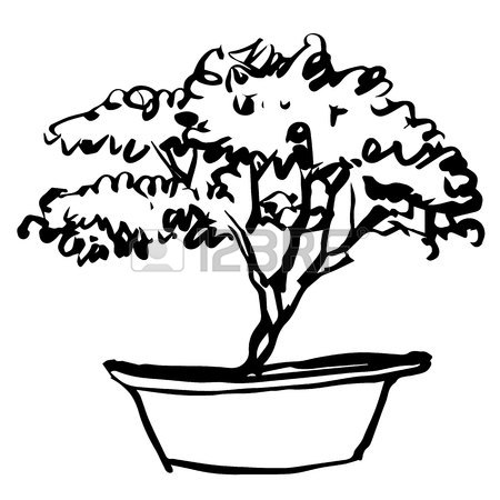 450x450 Bonsai Tree Drawing Stock Photos. Royalty Free Business Images