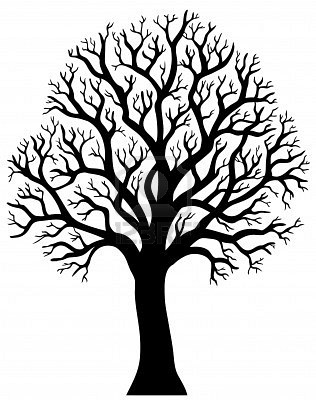 316x400 Silhouette Of Tree Without Leaf