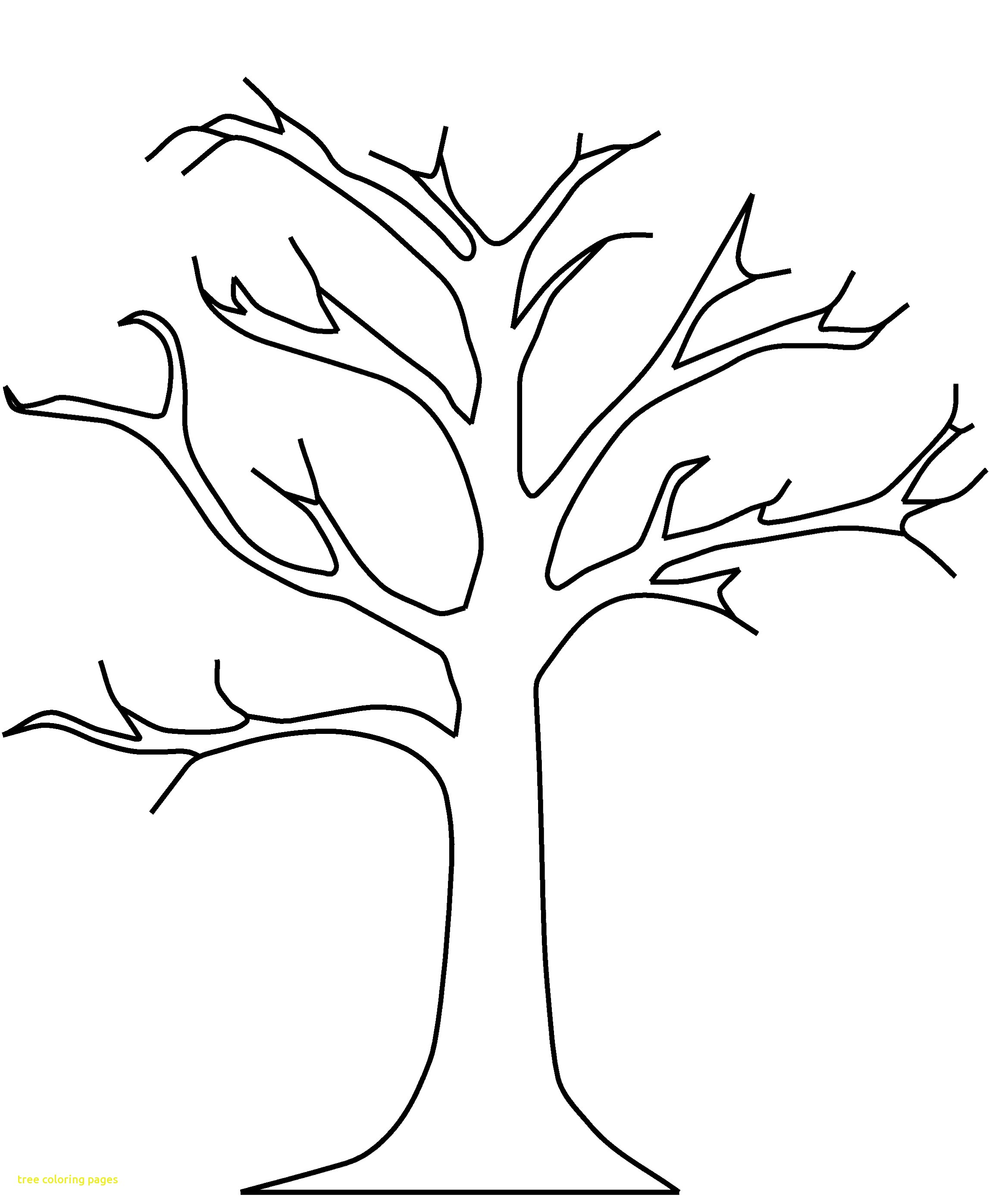 2294x2794 Tree Coloring Pages With Free Printable Tree Coloring Pages