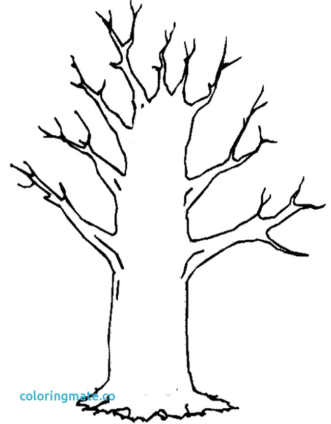 674x863 Tree Printable Coloring Page Elegant Christmas Tree Coloring Pages