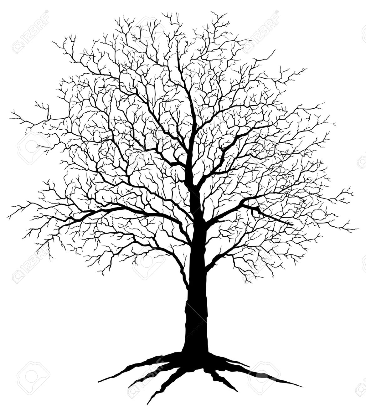 1169x1300 Tree Silhouette Is An Illustration Of A Tree In Winter With No