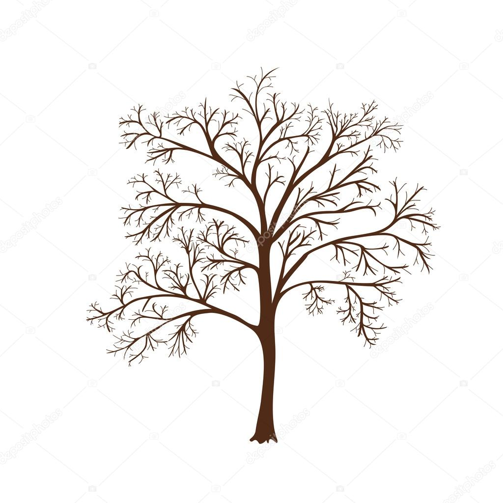 1024x1024 Icon Silhouette Of A Tree With No Leaves Stock Vector M