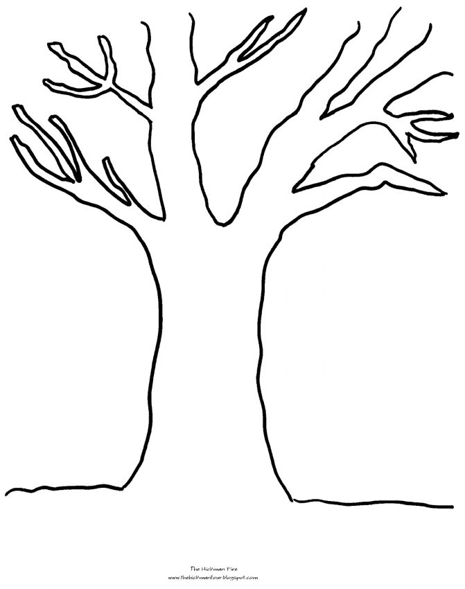 671x850 Coloring Pages Coloring Page Of Tree Coloring Page Of Pecan Tree