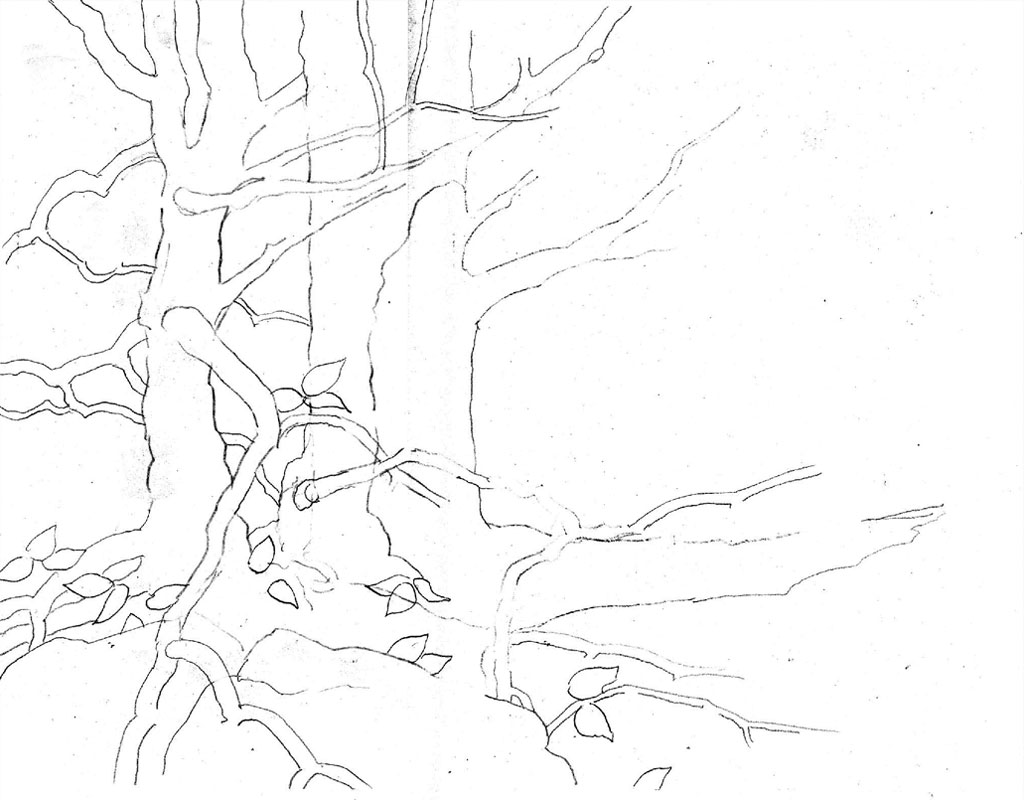 1024x800 Tree Outline Drawing From Artist Phil Metzger