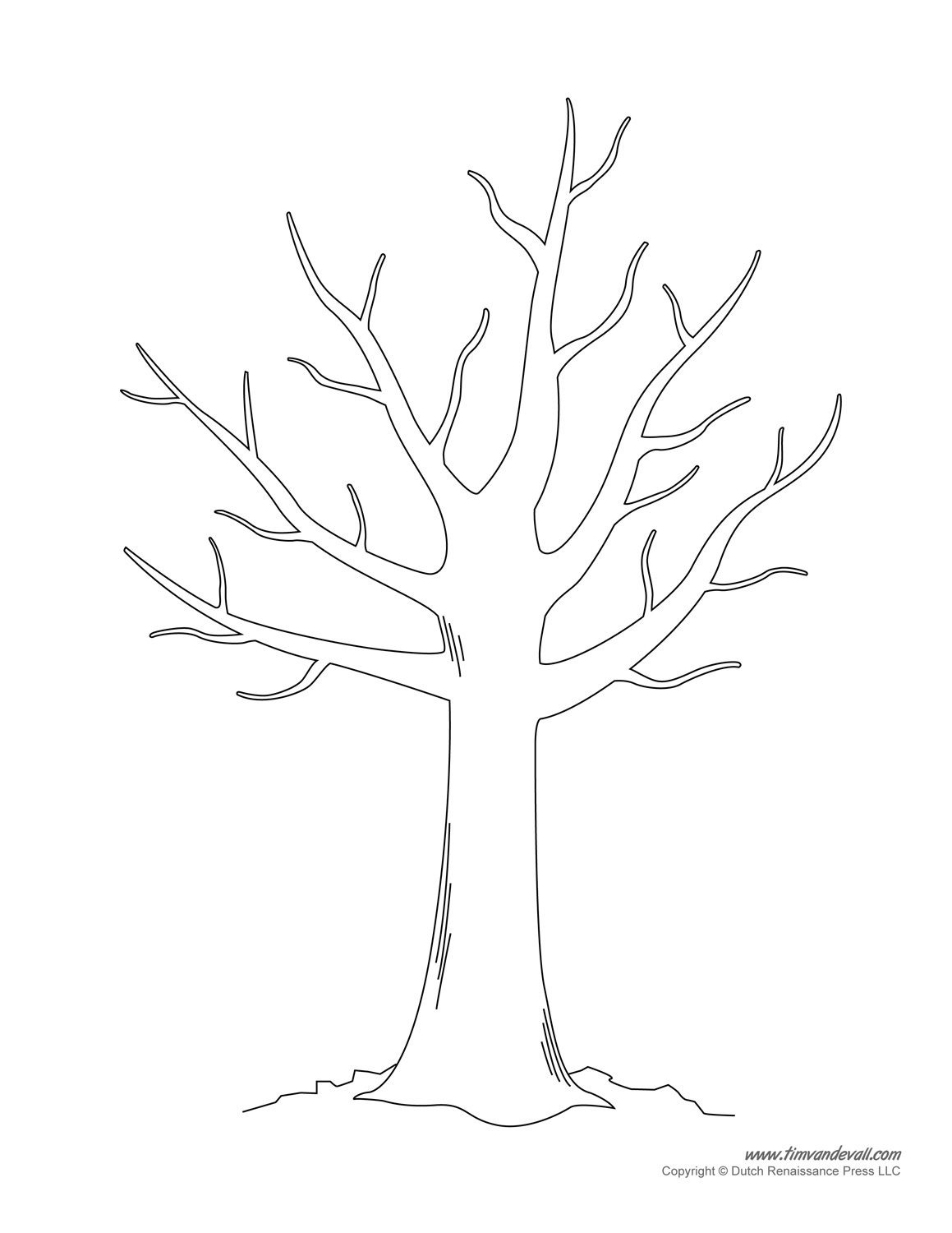 Tree Drawing Outline At Getdrawingscom Free For Personal Use Tree - Printable-tree-coloring-page