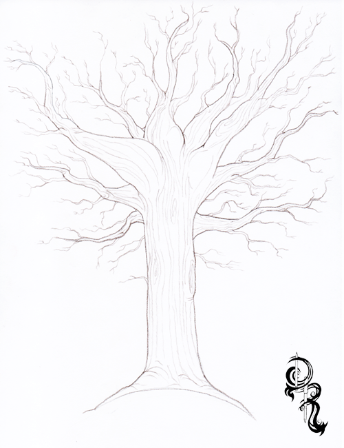 500x650 Pictures Fall Tree Drawings Pencil,