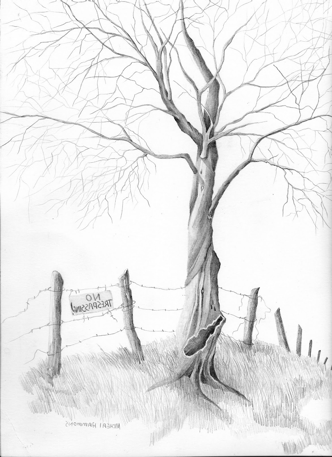 1164x1600 Simple Pencil Sketches Of Tree