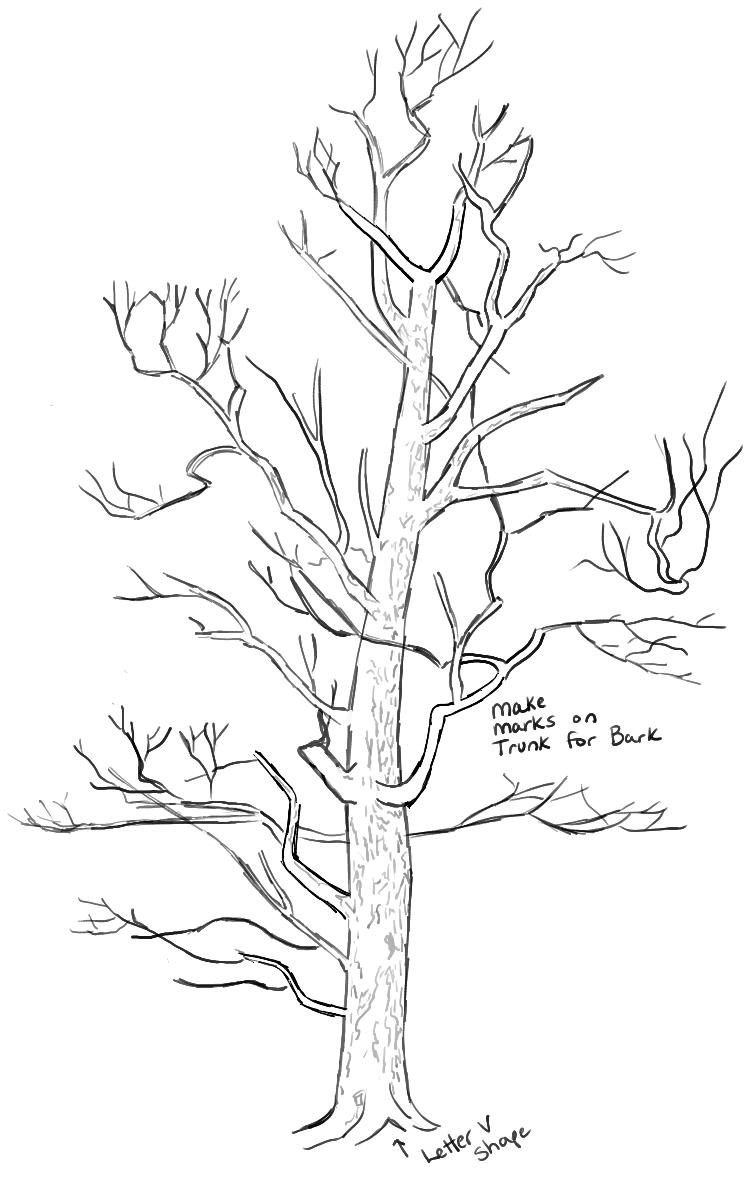 752x1177 Drawing A Tree Step By Step How To Draw Trees