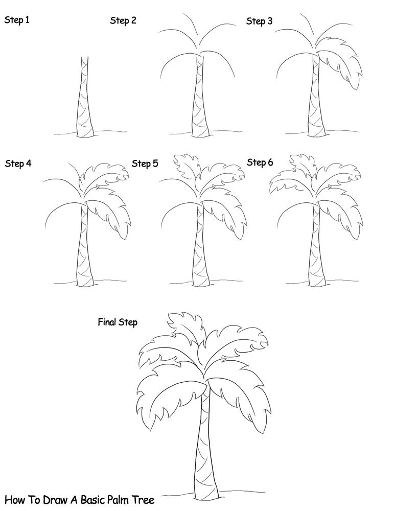773x1000 How To Draw Trees Dibujar Y Pintar Palm, Drawings