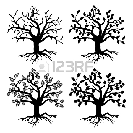 450x450 Tree Drawing Stock Photos. Royalty Free Business Images