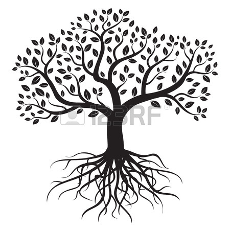 450x450 Tree Roots Stock Photos. Royalty Free Business Images