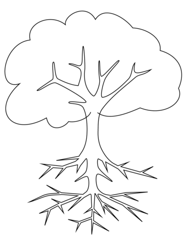 371x480 Tree With Roots Coloring Page Free Printable Coloring Pages