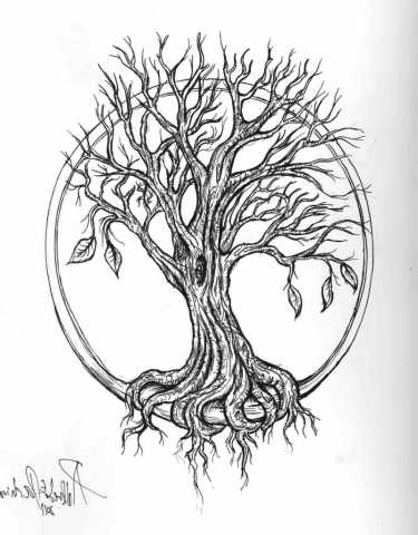 375x480 Meaningful Willow Tree Drawing Willow Tree Drawing With Roots