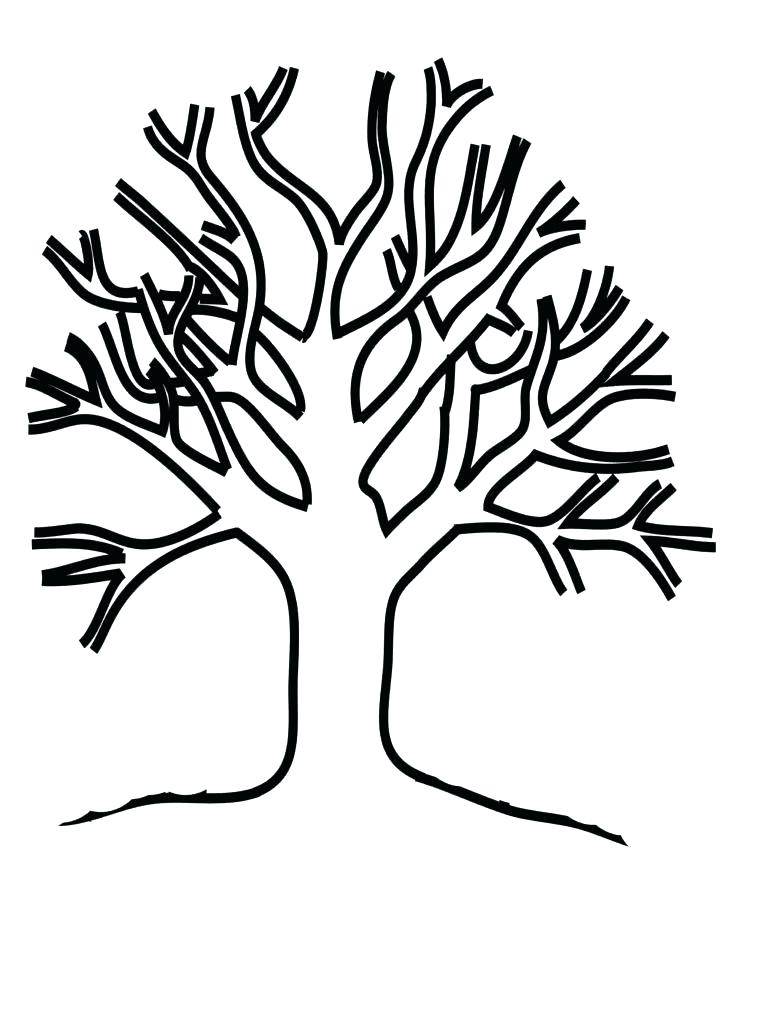 767x1024 Tree Without Leaves Coloring Page Fall Tree Without Leaves