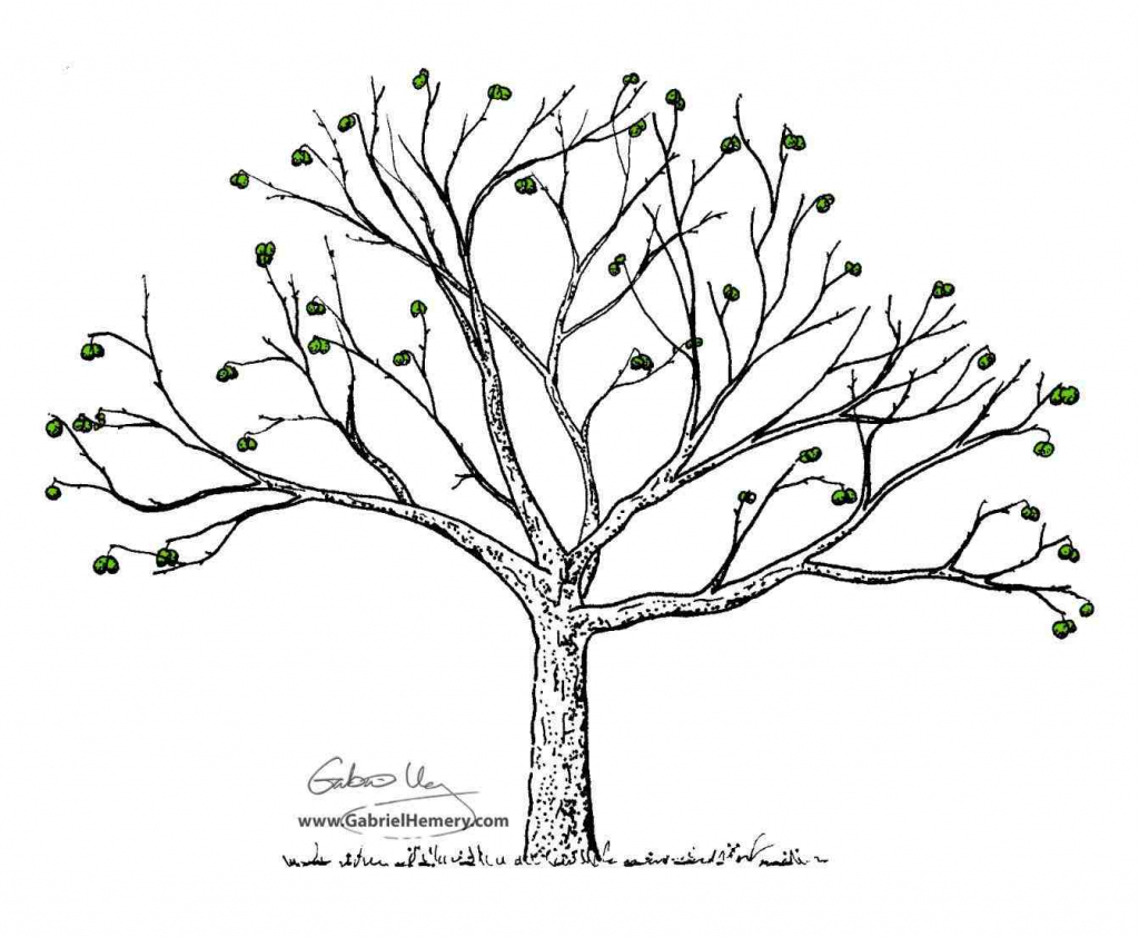 1024x842 Drawing A Tree Without Leaves Tree Without Leaves Drawing