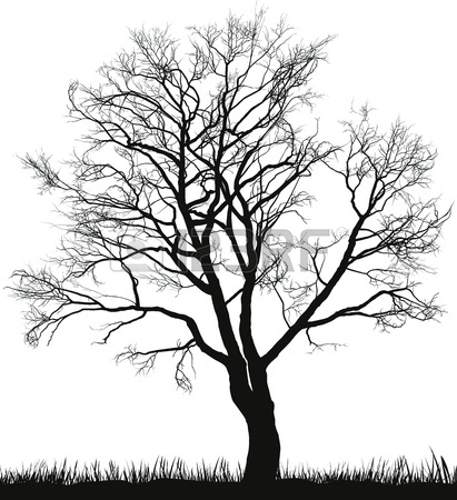 411x450 Illustration Of Walnut Tree In Winter Royalty Free Cliparts