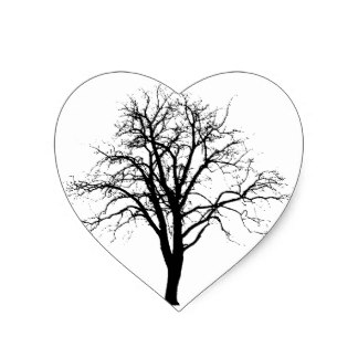 324x324 Bare Branches Tree Dead Leafless Craft Supplies Zazzle