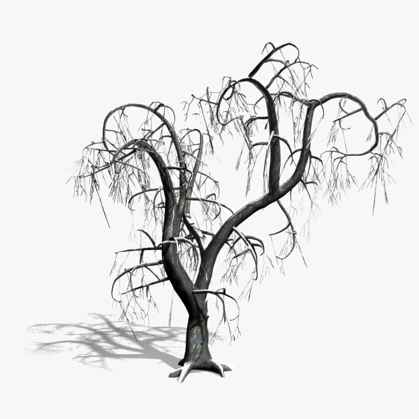 600x600 Searched 3d Models For Tree With Snow