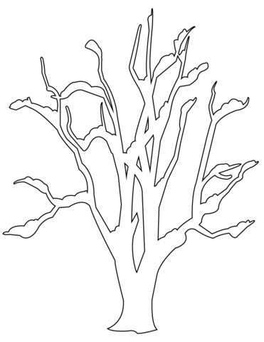371x480 Winter Bare Tree Coloring Page Free Printable Coloring Pages