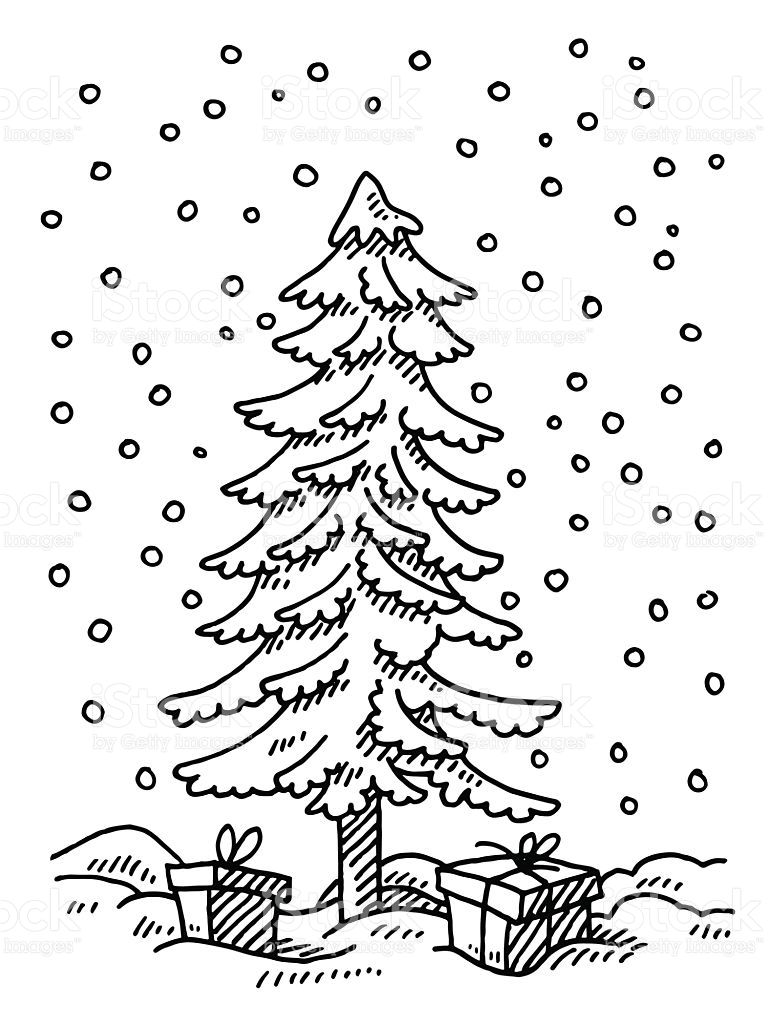 769x1024 Drawn Fir Tree Winter Tree