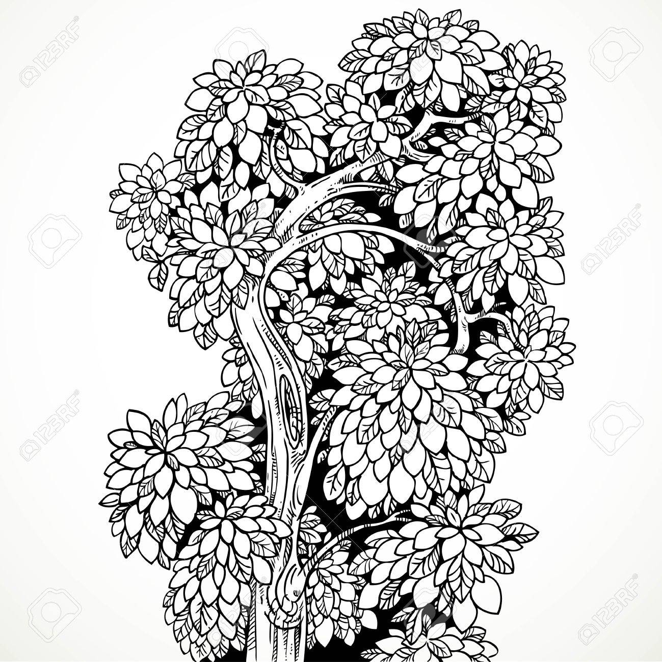 1299x1300 Graphically Drawing Black Ink Tree With Graceful Curved Bushy