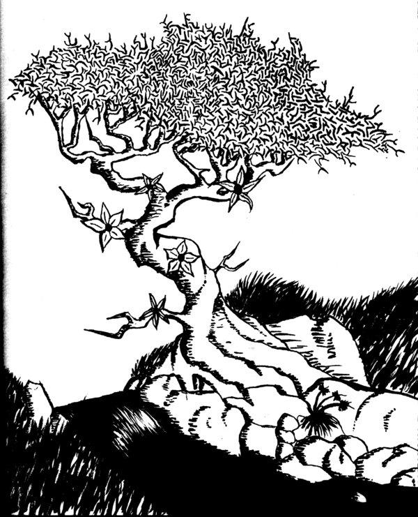 600x741 Bonsai Tree Inkly By Ryversylt