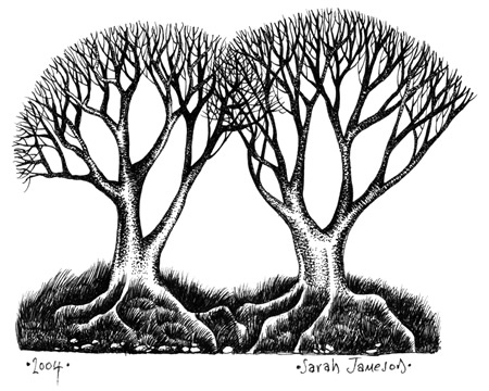 450x360 Sarah Jameson Unique Pen Amp Ink Drawings Welcome