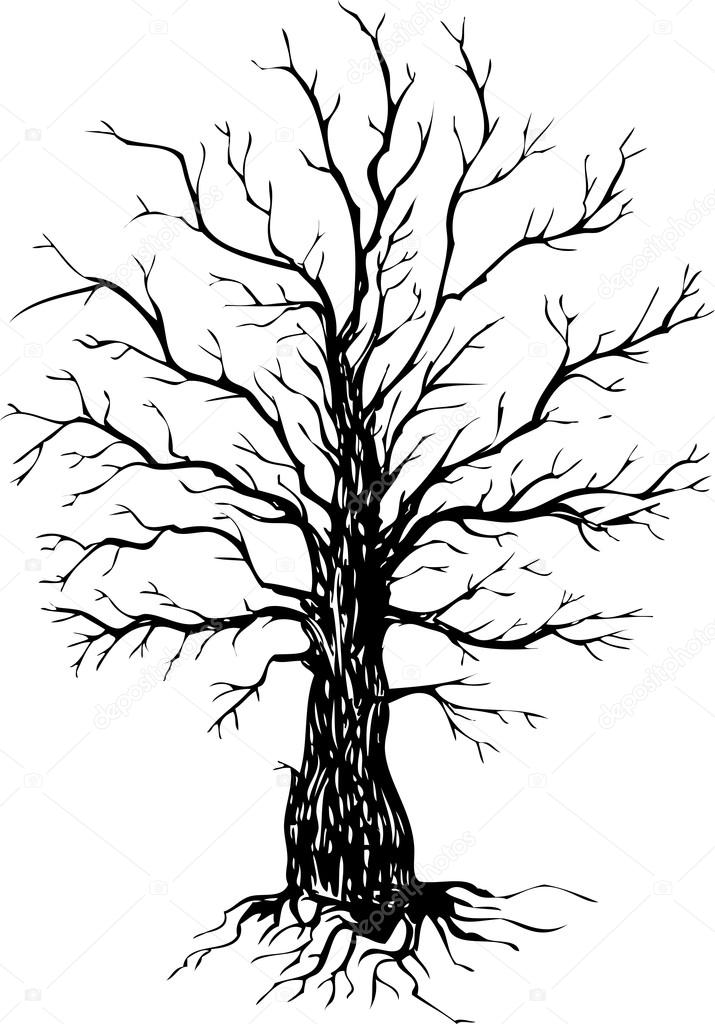 715x1024 Vector Ink Drawing Tree Stock Vector Cat Arch Angel