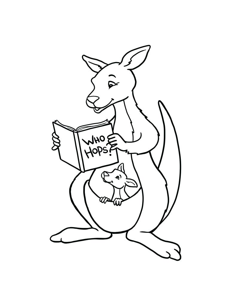 The best free Kangaroo drawing images. Download from 890 ...