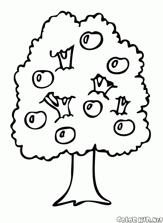 Tree Kid Drawing