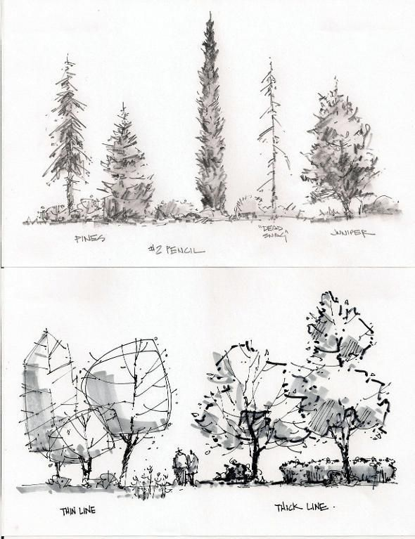 590x767 Essential Techniques For Sketching The Energy Of Places