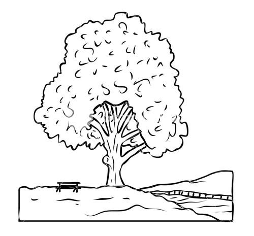 500x465 Tree Drawing Royalty Free Stock Image