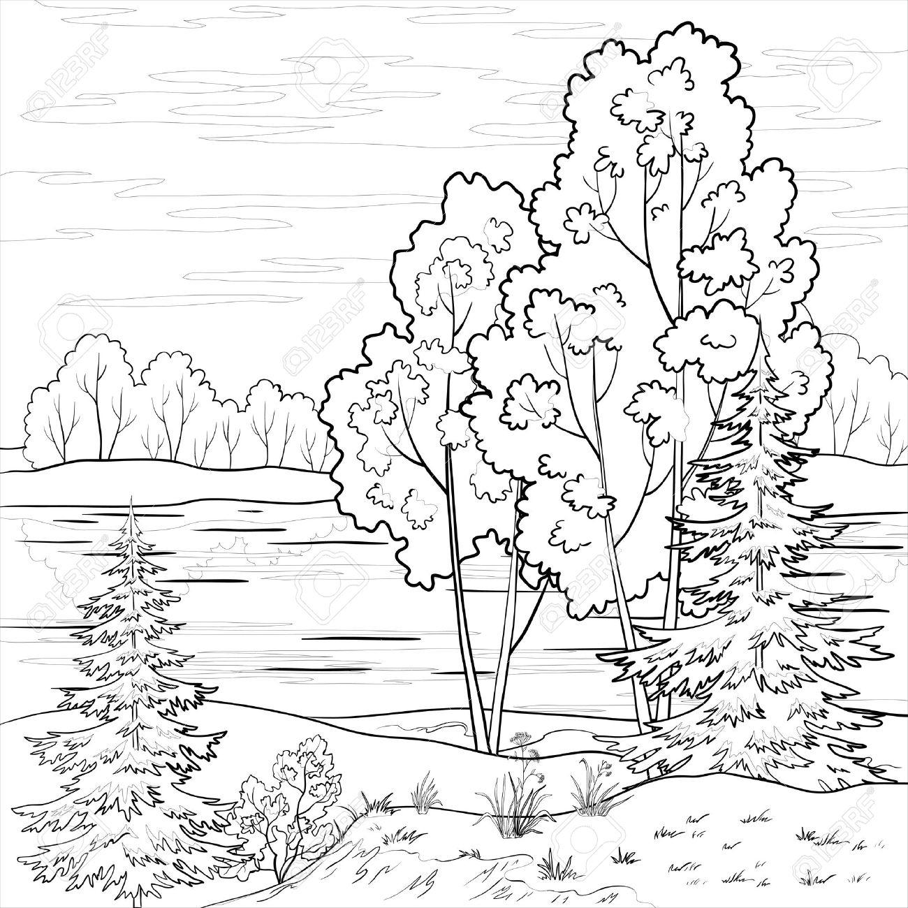 1300x1300 Contour Line Landscape Drawing Vector, Landscape Forest, River